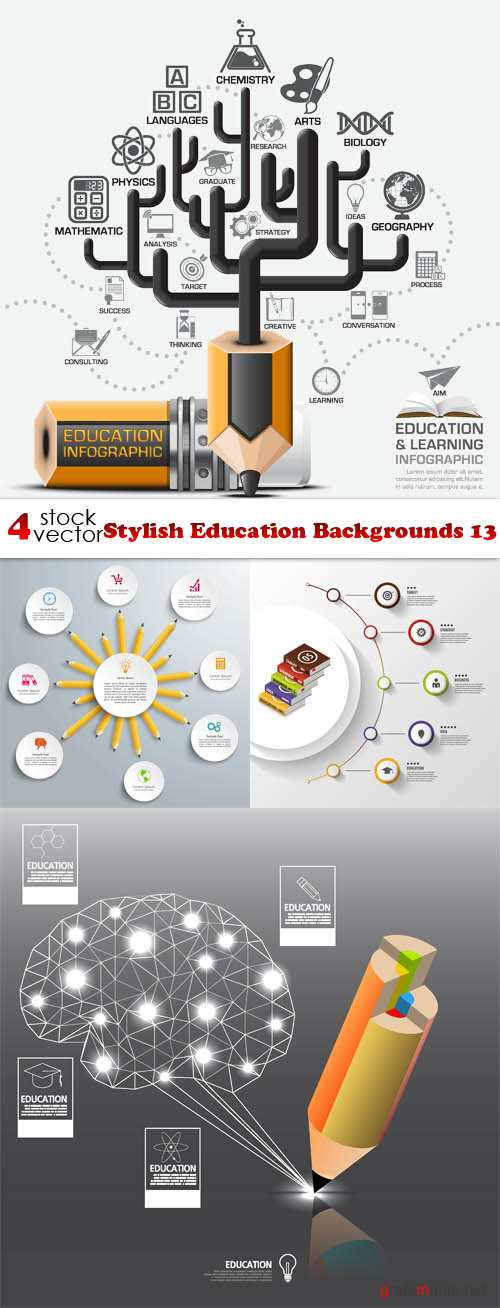 Vectors - Stylish Education Backgrounds 13