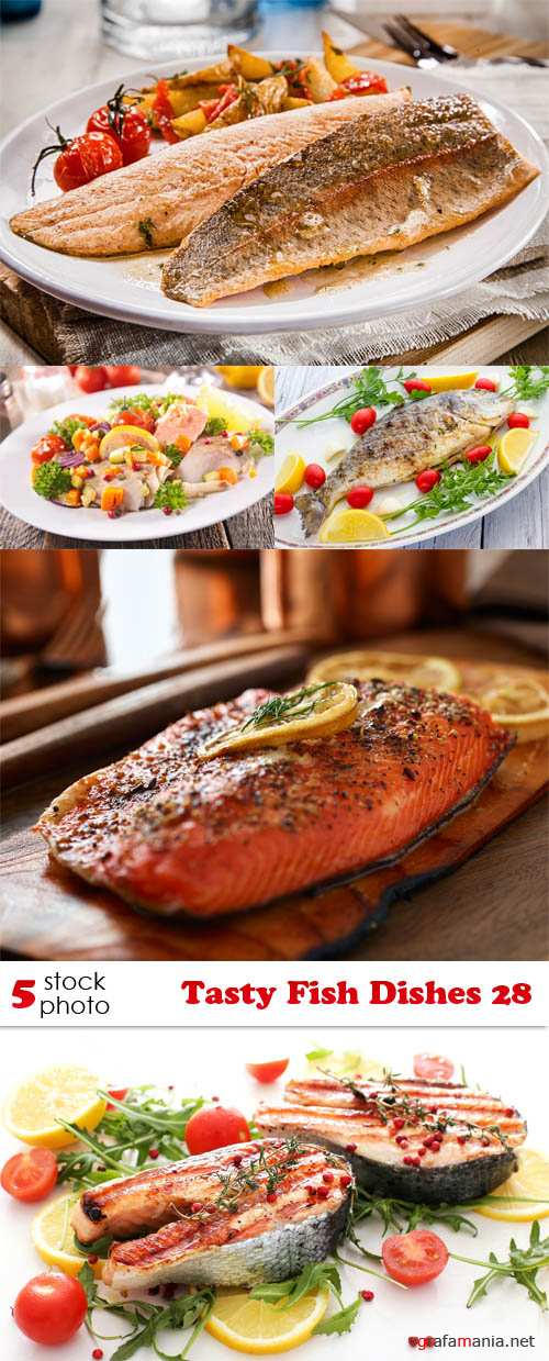 Photos - Tasty Fish Dishes 28