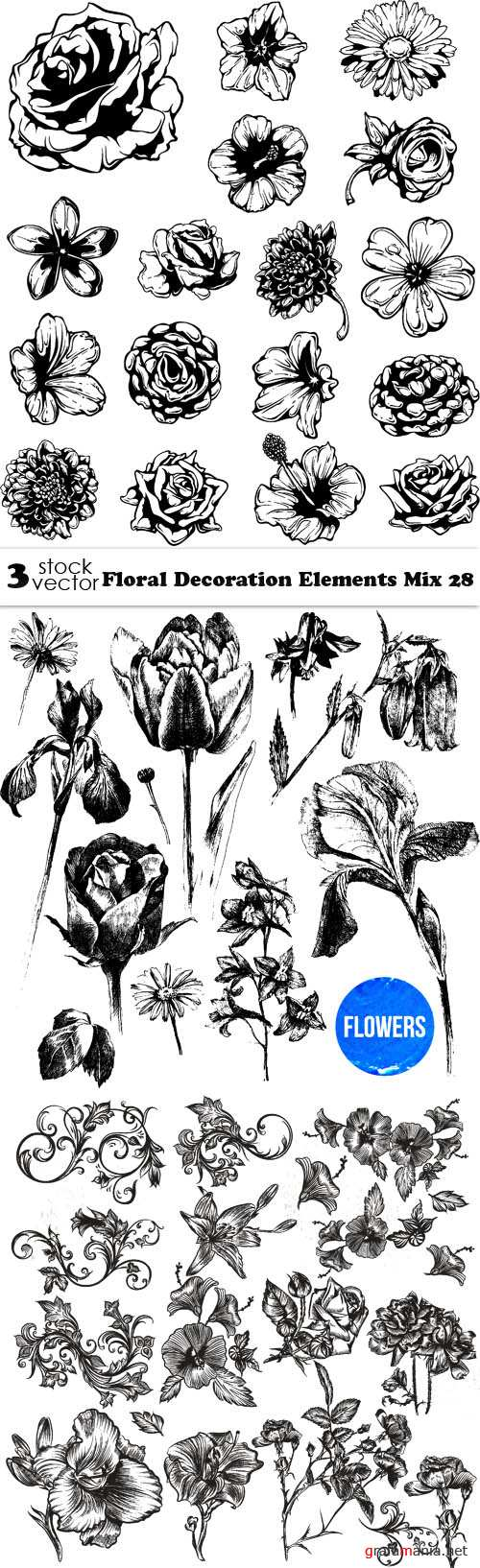 Vectors - Floral Decoration Elements Mix 28