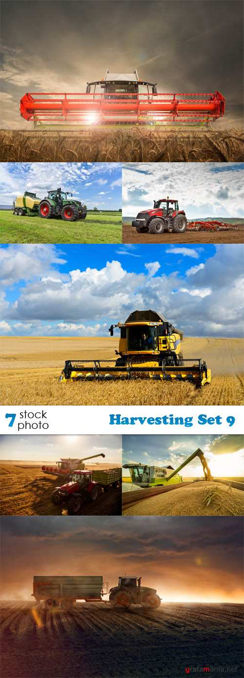 Photos - Harvesting Set 9