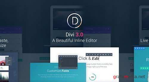 ElegantThemes - Divi v3.0.46 - WordPress Theme