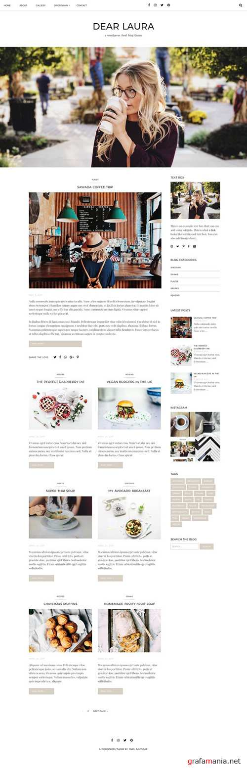 DEAR LAURA v1.0.0 - Minimal WordPress Blog - CM 1512251