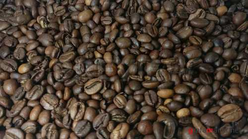 Falling and rotation roasted coffee beans in slow motion