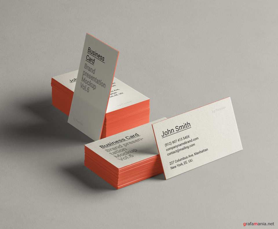 Business Card Brand Mockup Vol 6