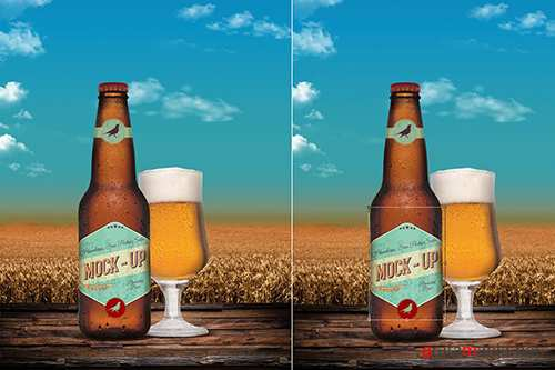 Beer Bottle Mock Up