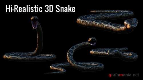 Realistic 3D Snake Animations Pack 18294425