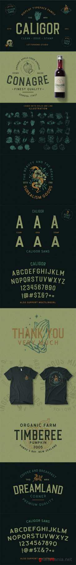 CALIGOR - Display Typeface 2785057