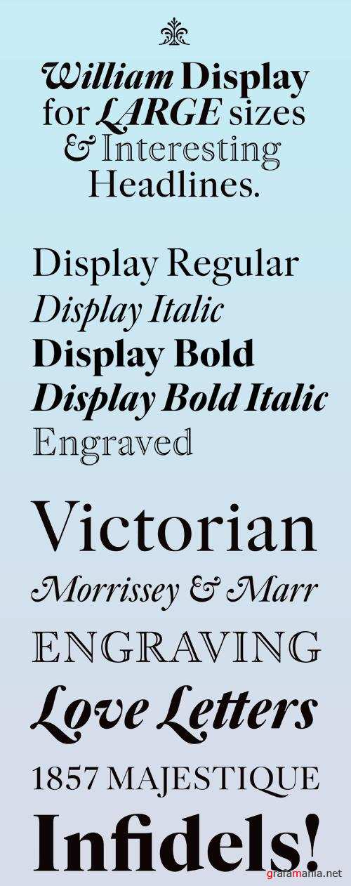 William Display Font Family