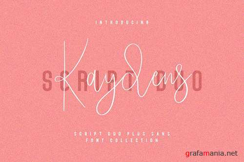 Kaydens Script Font Collection 3122402