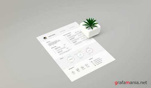 Resume Mockups and Template
