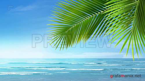 MA - Bright Blue Tropical Beach 233050