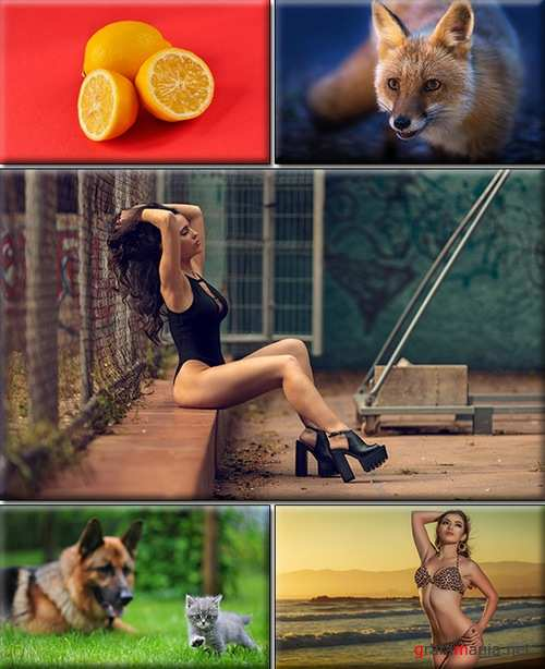 LIFEstyle News MiXture Images. Wallpapers Part (1502)