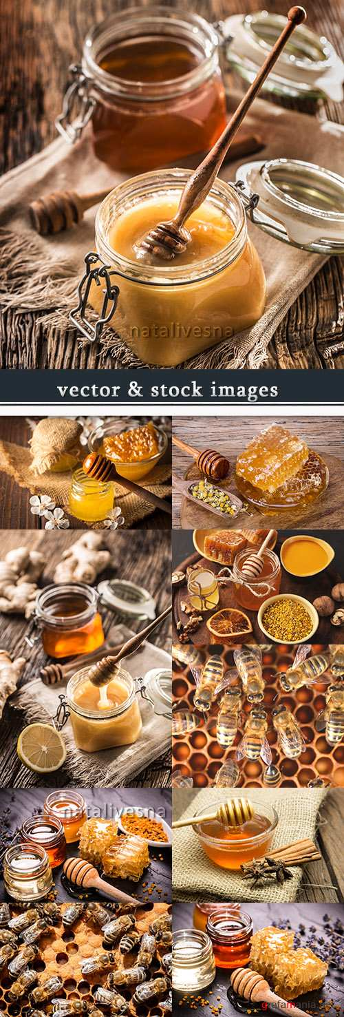 Honey and bees in honeycombs useful delightful dessert