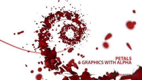 Petals Motion Graphics Pack 23891763
