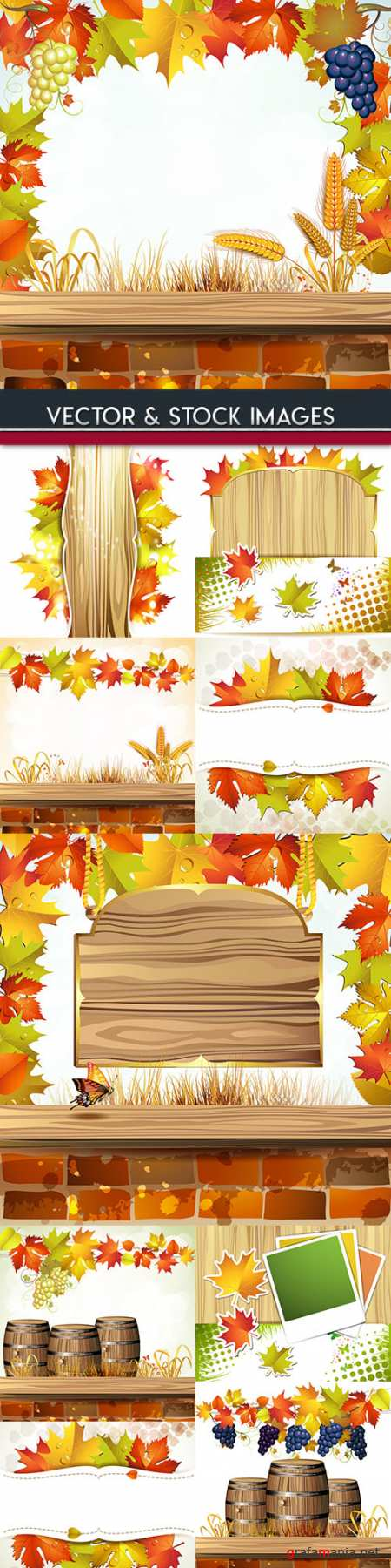 Autumn foliage and grape bunches illustration