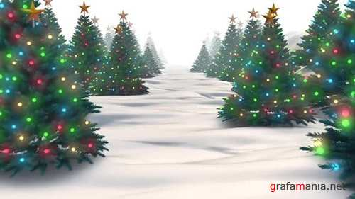 Videohive - Christmas Trees - 24964825