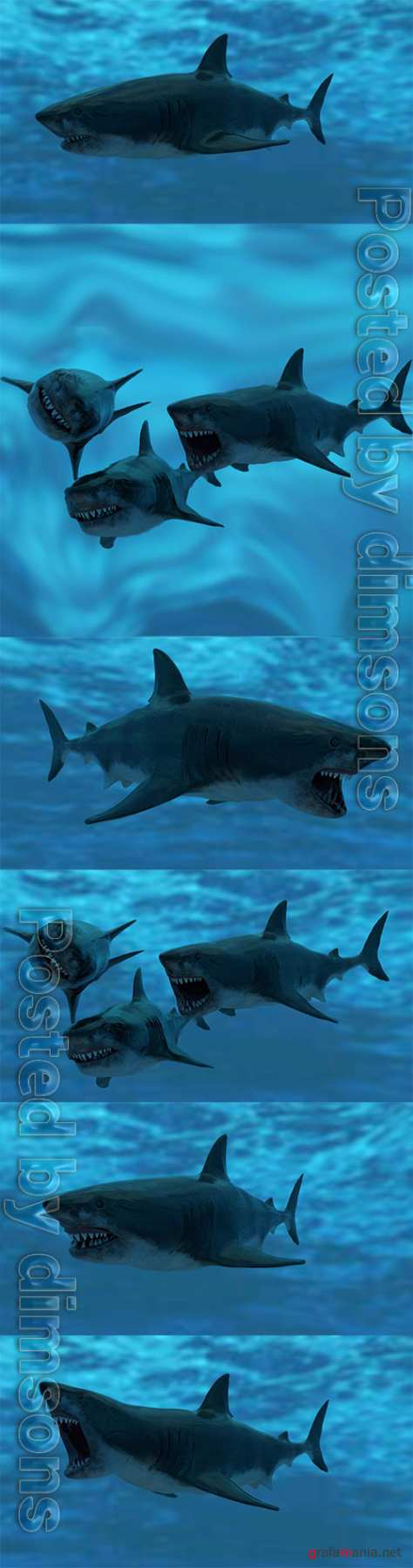 Great White Shark Model Unreal Engine 4 7 animations Pack Low-poly 3D model