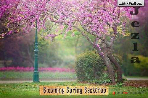 Blooming Spring Backdrop - 4772037