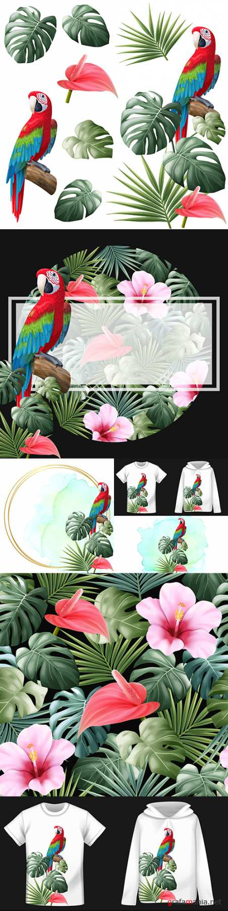 Parrot, leaf monsters and palm trees with colors realistic illustrations