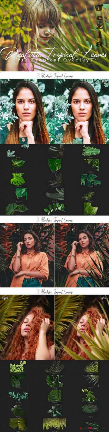 30 Realistic Tropical Leaves Png Photo Overlays  - 620557