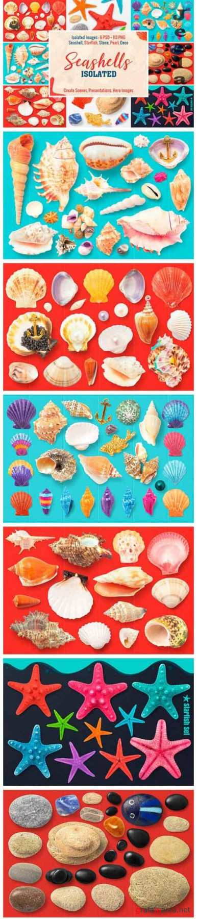 Isolated Seashells & Stones - 1776922