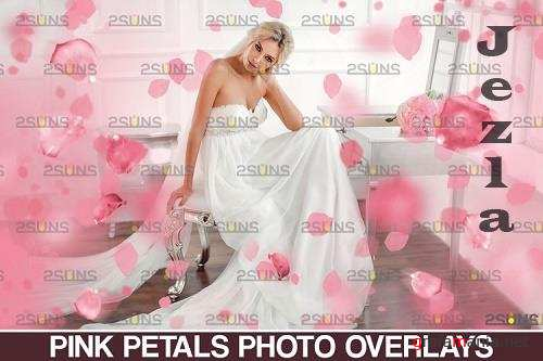 Falling Rose Petals Photo Overlays , Pink petals png - 1132981