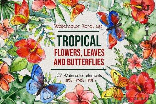Tropical exotic leaves & flowers, butterflies clip art - 1014498