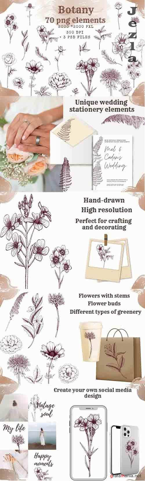 Botanical aesthetic clipart,hand drawn floral design element - 1246269