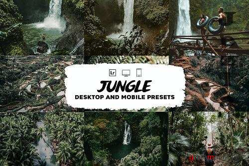 Jungle Lightroom Presets - 5953542
