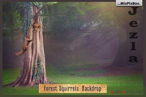 Forest Squirrels Backdrop - 6120189