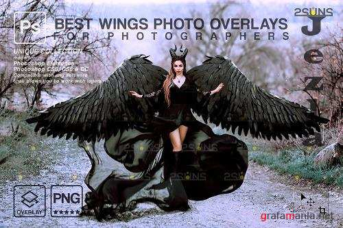Realistic White Black Gold Angel Wings Photoshop Overlays V1 - 1447937