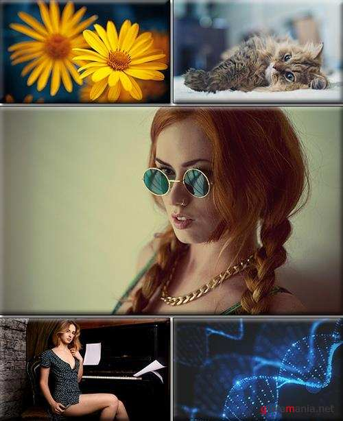 LIFEstyle News MiXture Images. Wallpapers Part (1848)