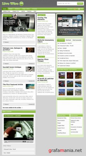 Live Wire Series - WordPress Template
