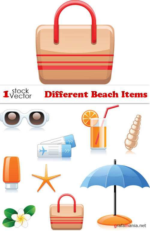 Different Beach Items Vector