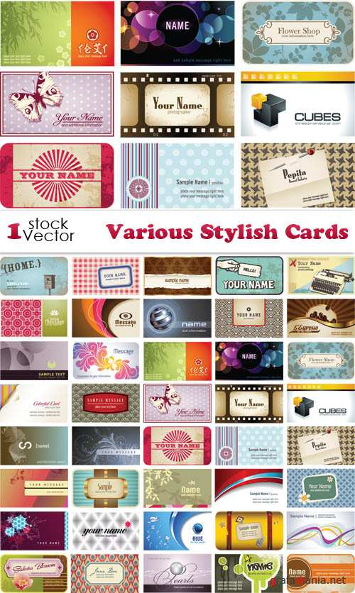 Various Stylish Cards Vector