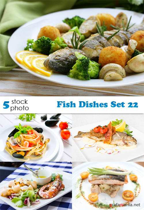 Photos - Fish Dishes Set 22