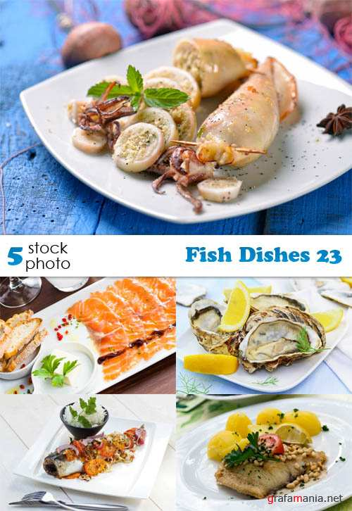 Photos - Fish Dishes 23