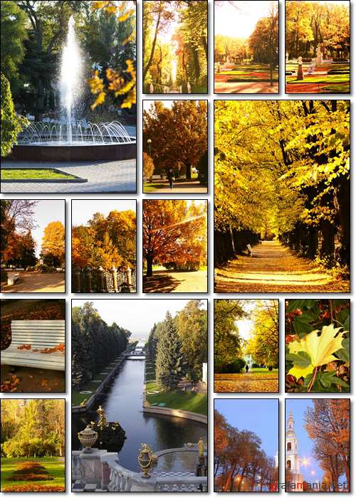 Golden Autumn in Saint Petersburg - Stock photo