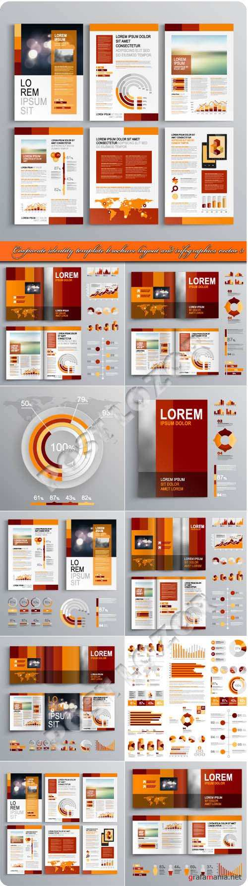 Corporate identity template brochure layout and infographics vector 3