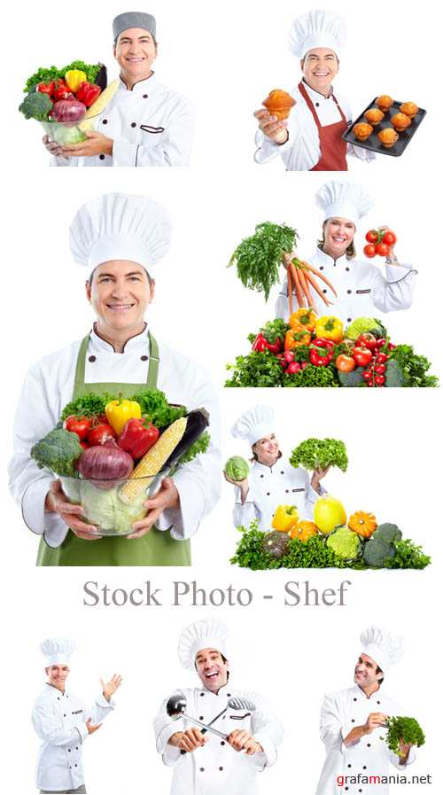 Stock Photo - Shef