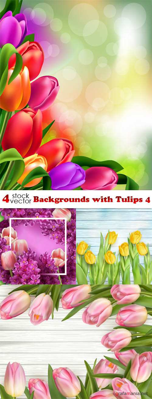 Vectors - Backgrounds with Tulips 4