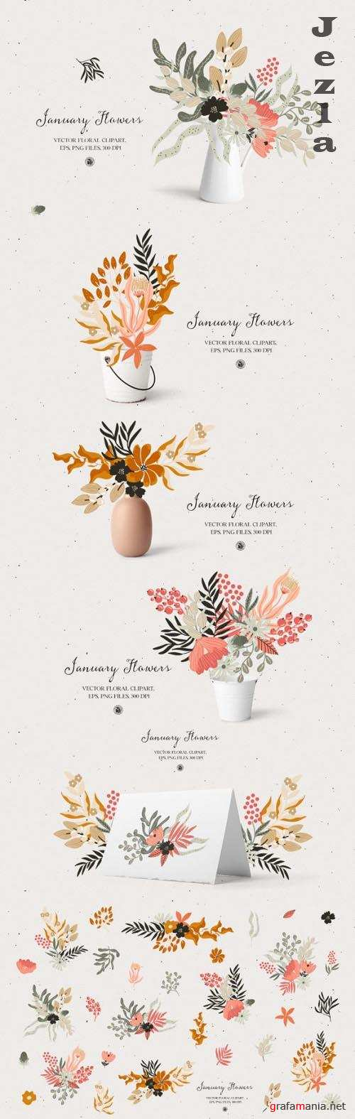 January Flowers - Floral Vector Set
