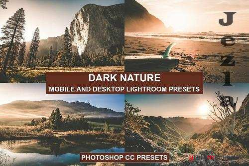 Desktop and Mobile Lightroom Presets Nature Tones - 1367935